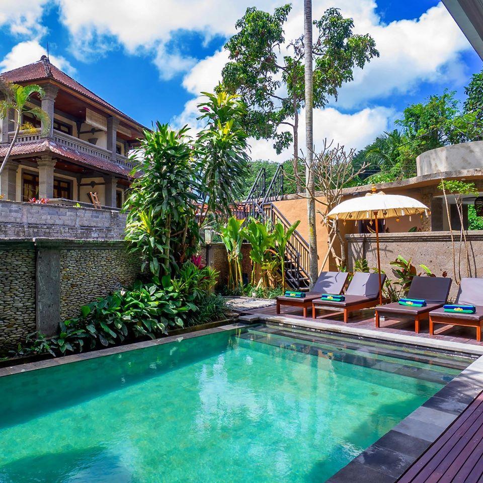 Ubud Budget Hotel Pool
